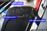 36V 13ah onderaan de Ingevoerde Batterij van het Lithium van het Type van Buis Samsung met Lader voor Om het even welke Fiets