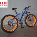 リチウム電池および脂肪質のタイヤの電気自転車