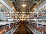 H Тип Автоматический уровень Hen каркас для плат оборудование для продажи