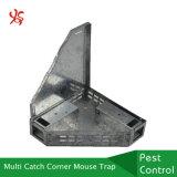 Trappe multi de souris de coin en métal de loquet de gant de baseball de parasite avec le couvercle solide