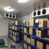 Kühlraum, Tiefkühltruhe, Abkühlung-Teile, PU-Zwischenlage-Panel