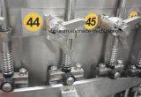 Imbottigliatrice automatica piena dell'acqua gassosa di Bph della scuderia 10000
