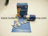 Slim Herbal Slimming Capsules de Beauté les régimes alimentaires Produits de beauté de la pilule