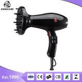 Kompakter Haartrockner für Salon und persönlichen Gebrauch Rg8018