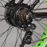 Neue Art 500W verdoppeln Aufhebung-elektrisches Schmutz-Fahrrad