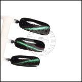 Cat Eyes Magic 3D magnétique Chameleon UV Gel Pigment polonais