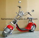 リチウム電池が付いている2つの車輪の電気オートバイ