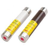 Tipo standard fusibile delle BS W di buoni prezzi dell'installazione della sbarra collettrice