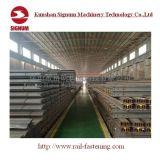 중국 기준 GB/T11265 12kg 강철 가벼운 가로장