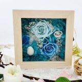 De in het groot Eeuwige Regelingen van Blauwe Bewaarde Bloemen namen toe