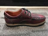 Kuhbereift lederne Mens-Form Turnschuh-Mann-beiläufige Schuhe