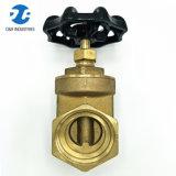 Dr. Brass Pn16 Flow Control Klep van de Poort