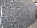 Granito do branco de Seawave do granito de Seasame do granito do branco chinês