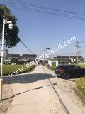 Precio barato protección IP68 30W de luz solar calle con 3 años de garantía