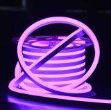 높은 광도 LED 리본 훈장 빛 방수 옥외 SMD2835 큰 크기 LED 네온 코드