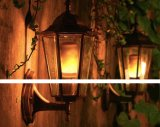 La bombilla E27 de la llama mira al trasluz el efecto de parpadeo para la decoración del festival