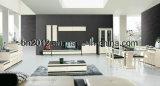Wohnzimmer-Möbel moderner MDF und Glas Fernsehapparat-Standplatz (DS-147)