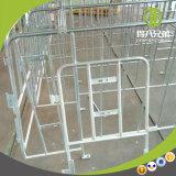 Einzelner Sau-Stall hergestellt in China