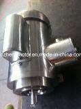 Motor do aço inoxidável para a indústria alimentar