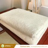 Fodera per materassi impermeabile misura fornitori cinesi di stile con la superficie organica del Terry del cotone