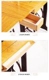 Máquina de coser del hogar de la mariposa de Feiren con el tipo doméstico del pedal