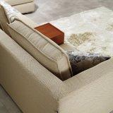 Sofá lavable del marco moderno de madera sólida para los muebles Fb1113 del hotel