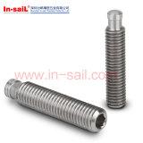 Parafusos principais lisos de DIN6332 Ganter