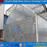 Casa verde de vidro do grande Hydroponics comercial do tamanho para o tomate