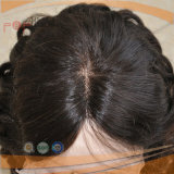 ブラジルの毛の完全なレースのかつら(PPG-l-01324)