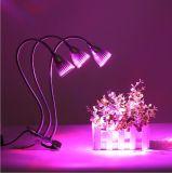 As plantas do diodo emissor de luz crescem a lâmpada para flores/vegetais/frutas