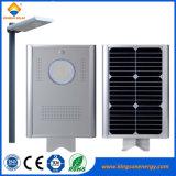 sistema eléctrico solar ligero solar integrado de 12W LED para el jardín