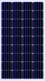 modulo solare monocristallino 115W per la su-Griglia/sistema di fuori-Griglia (ODA115-18-M)
