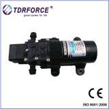 12V DC 살포를 위한 소형 격막 승압기 수도 펌프 (FL-2236)