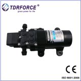 Mini 12V DC para jardín de la bomba de suministro de agua o de los hogares de pulverización