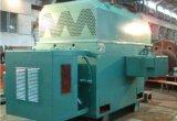 Motor de CA de la alta calidad Yrkk560-8 de la fuente de Semc