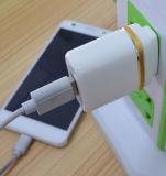 Chargeur privé de cube en téléphone mobile de course du modèle USB