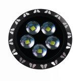 Fabbrica dell'indicatore luminoso 200W della baia di induzione di Favorablestable alta