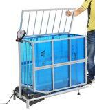 Pet Treadmill (DLS-120)