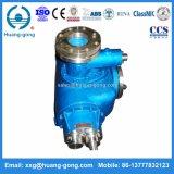 Bomba de tornillo del acero inoxidable dos de China Huanggong para el producto químico