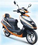 E-Fahrrad (CTM-782)