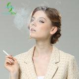 Cigarette Electronic D6 descartável Ecig Private Label com Vário Eliquid