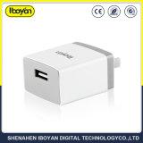 5V 2.1A solo puerto USB cargador de pared con el paquete