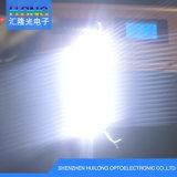 LED SMD 39*12mmの安い価格LEDのモジュール