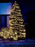 50 blanc chaud solaire cuivre lumières fil LED