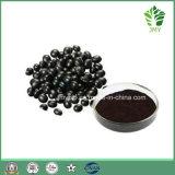 Anthocyanidines chaudes d'extrait de soja de noir de vente 5%-20%