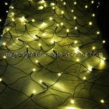 110V休日の屋外の装飾LEDの純クリスマスの照明の暖かい白色光