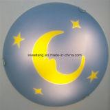 De Lamp van het Plafond van het glas voor het BinnenLicht van de Slaapkamer van de Verlichting