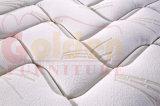 China Amttress fábrica Futón Pocket Spring colchón