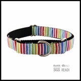 Productos para Mascotas Martingale Shock Pet Dog Cat Training Collar