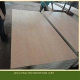 Madera contrachapada comercial de la cara de Linyi 2.5m m Plb para la decoración